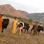 Bellota Agrisolutions med den landlige sektor